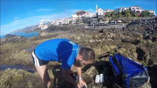 This is a fast video where you can see one day field work at Madeira Island. This is part of an experimental study focused on intertidal communities and colonization processes on artificial vs natural substrates. Enjoy it!