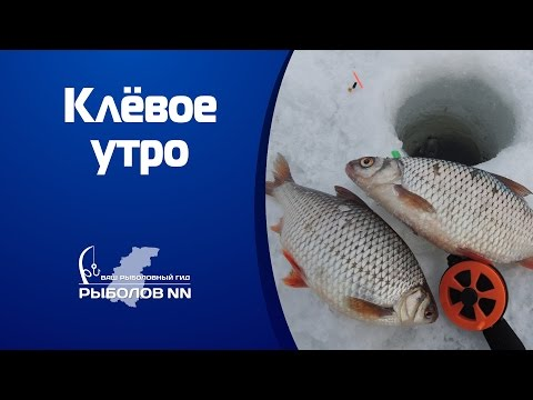 ловля окуня на горьковском водохранилище видео