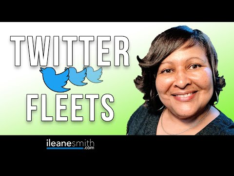Watch 'Beginners Guide to Using Twitter Fleets '