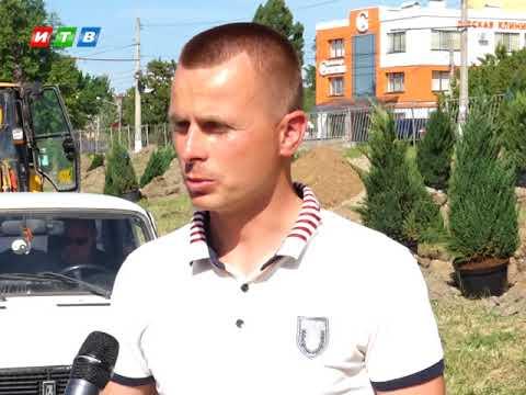На пр Победы в Симферополе высадят 150 новых деревьев