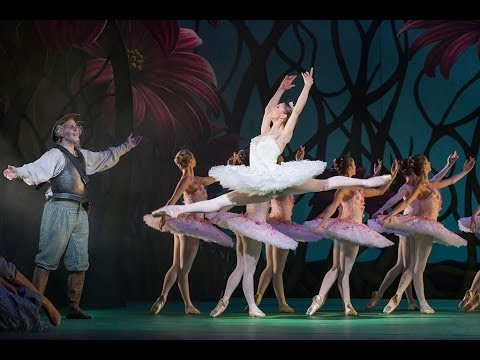 Don Quixote: An introduction to Act Two (The Royal Ballet)