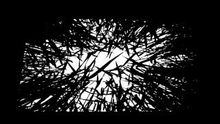 The Cinematic Orchestra (Mix)