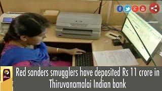 Thiruvanamalai India  city photos gallery : Red sanders smugglers have deposited Rs 11 crore in Thiruvanamalai Indian bank