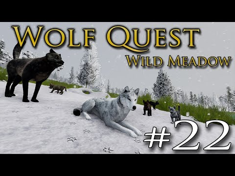 An Ancient BEAR BATTLING Legacy Returns?! 🐺 WOLF QUEST: WILD MEADOW • #22