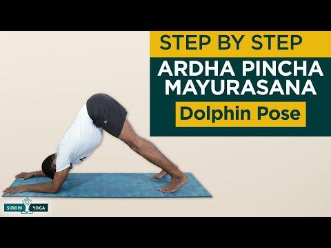 Ardha Pinch Mayurasana (Dolphin Pose)