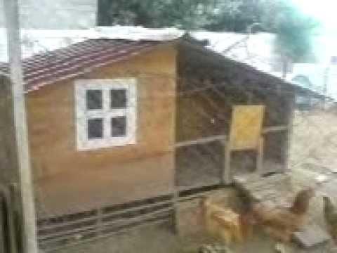 κοτετσι - ξύλινο κοτέτσι για αλανιαρες κότες κατασκευή μακης αρβανιτιδης.