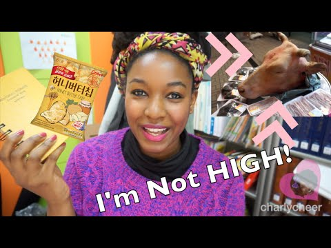 Animal's Head Chopped Off | I'm Not High | Life in Korea | #3