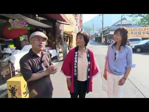 琴平町でまち歩きを体験 《香川県》