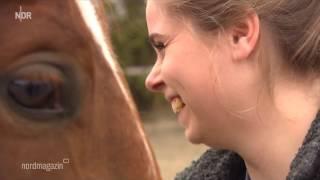 Videobeitrag - Pferdeosteopathie
