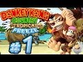 Let's Play Donkey Kong Country Tropical Freeze - Part 1 - Tropische Kälte!