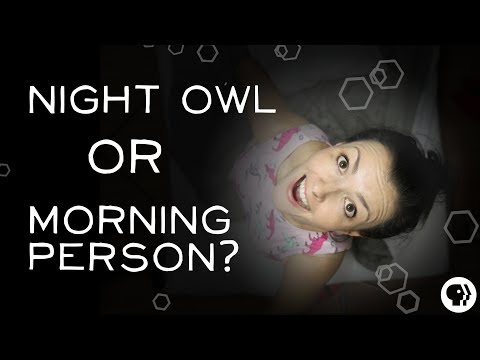 What Makes Someone a Night Owl?