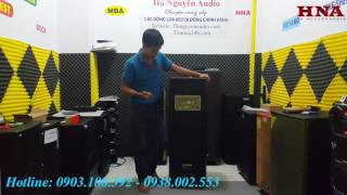 Review loa kéo BOSE DK-3215 | Loa BOSE 2 Bass, công suất khủng.