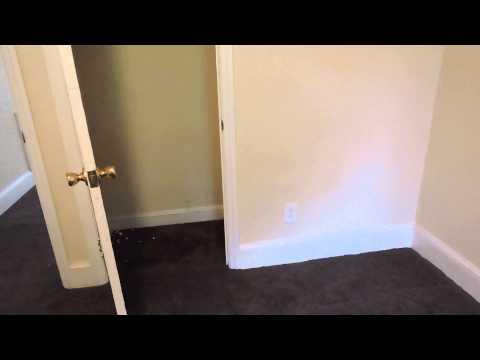 Tour of 1 Bedroom apartment in Mill Hill Neighborhood of Trenton