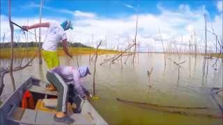 Pescaria De Tucunaré Em São José Do Buriti  Represa De Tres Marias