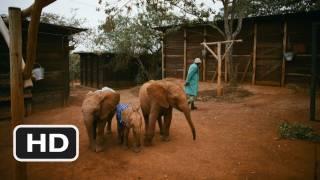 Nonton Born to Be Wild #5 Movie CLIP - Elephant Nursery (2011) HD Film Subtitle Indonesia Streaming Movie Download