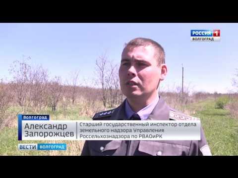 О проблеме зарастания земель сельхозназначения в Волгоградской области
