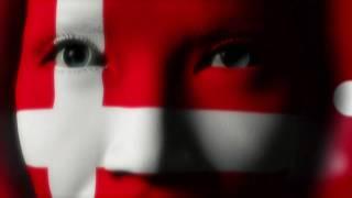 Dansk Oversætter, Translatør, Oversættelse Til Dansk