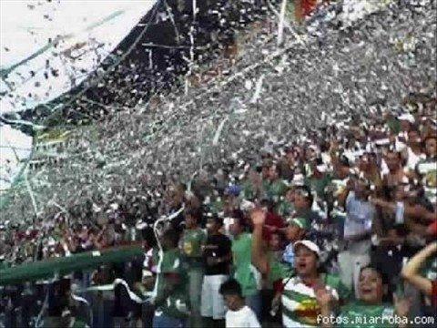 furia verde ( unidos x estos colores ) - Fúria Verde - Marathón