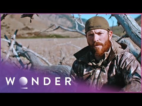 These Hunters Recall Their Deadliest Encounters | Dropped S2 EP10 | Wonder
