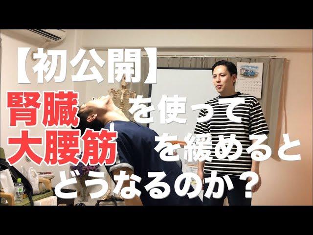 【初公開】腎臓を使って大腰筋を緩めるとどうなるのか? 大阪 高槻 腰痛