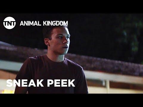 Animal Kingdom: The Hyenas - Season 3, Ep. 13 [SNEAK PEEK]   TNT