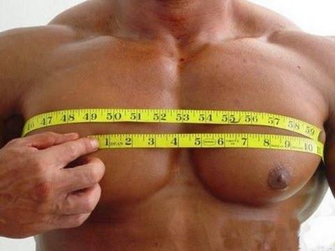 Растяжки на грудных мышцах у подростков фото
