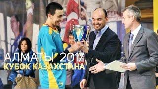 Кубок Казахстана 2017 — Финал: «Астана»— «Барсы Атырау»