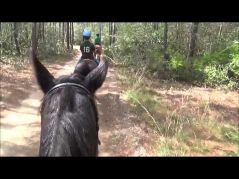 Perdido Water Management Trail Ride Pensacola FL