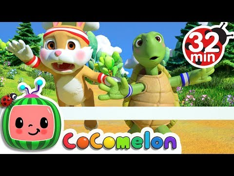The Tortoise And The Hare | +More Nursery Rhymes & Kids Songs - CoCoMelon
