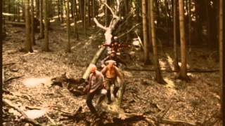 Video Café The Krym - Prapory (tramp video version)