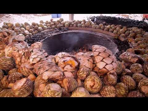 El Mezcal de Puebla ahora tiene denominación de origen