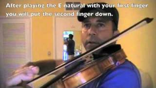 Learning notes on the violin D-string.m4v