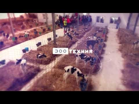 Агропромышленный форум молоко России