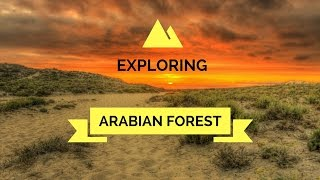 Hello Everyone this weekend we went to explore Arabian forest and hanged out at Friend's office , Hope you all will enjoy our vlog.Please comment, Like , Share and Subscribe to NKB VLOGS.Email : groupnkb@gmail.comMusic Credits :Song: Floatinurboat - Spirt of Things [NCS Release]Music provided by NoCopyrightSounds.Video Link: https://youtu.be/LY1ik-Do_MUDownload Link: https://NCS.lnk.to/SpiritOfThings▬▬▬▬▬▬▬▬▬▬▬▬▬▬▬▬▬▬▬Song: Glude - Identity [NCS Release]Music provided by NoCopyrightSounds.Video Link: https://youtu.be/_z1mdKOw6PQDownload Link: http://NCS.lnk.to/Identity▬▬▬▬▬▬▬▬▬▬▬▬▬▬▬▬▬▬▬Song: Cartoon - C U Again feat. Mikk Mäe (Cartoon vs Futuristik VIP) [NCS Release]Music provided by NoCopyrightSounds.Video Link: https://youtu.be/NJNp6DnAAIoDownload Link: http://NCS.lnk.to/CUAgain▬▬▬▬▬▬▬▬▬▬▬▬▬▬▬▬▬▬▬