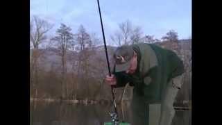 La Pêche À L'anglaise Et Aux Vers De Terreau