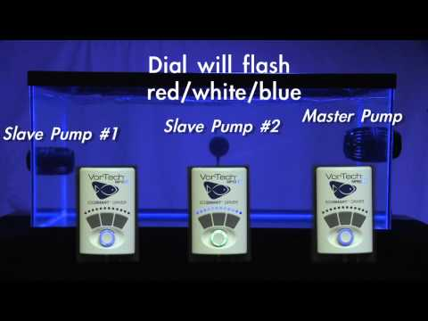 Setting Up a Master/Slave Relationship (3 Pump Configuration)