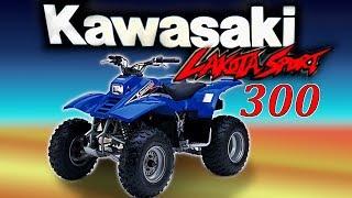 2. Lakota Sport 300 Review   First Impressions.