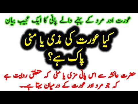 Kaya Aurat ki Mani Aur Mazi Pak hai 2017 - смотреть онлайн на Hah Life