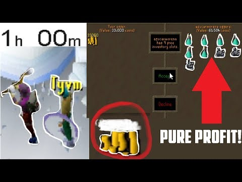 Reddit wtf - 1 Hour of WYVERN RUNNING! WTF THIS ACTUALLY MAKES BANK?! - Oldschool 2007 Runescape