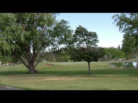 Lake Shastina Resort Golf Course