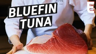 How To Make Sushi Out of a 450 Pound Bluefin Tuna by Eater