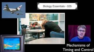 025 - Mechanisms of Timing and Control Paul Andersen explains how organisms regulate timing and control. Phototropism and Photoperiodism allow plants to ...