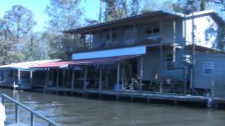 Download Lagu The Honey Island Swamp on the Pearl River in Louisiana Mp3