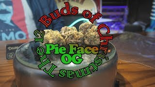 Pie Face OG 12 Buds of Christmas by Urban Grower