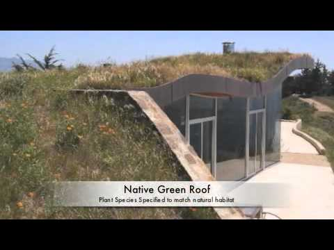Green Roof Construction