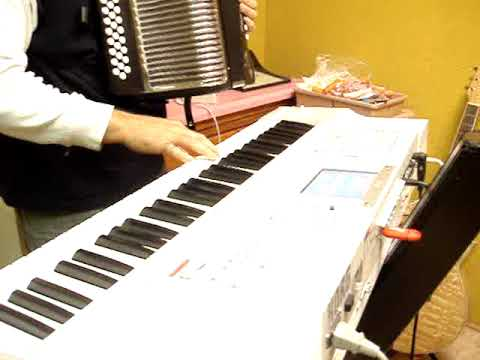HOHNER ACCORDION SAMPLES