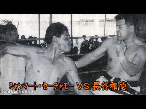 Karate Kyokushin Ko Muay