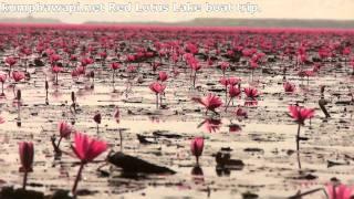 Kumphawapi Thailand  City new picture : Red Lotus Lake Kumphawapi Thailand boat trip