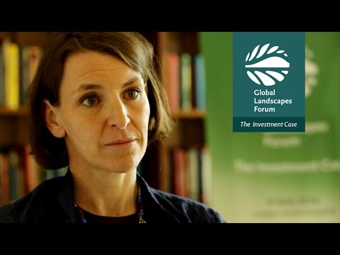 DFID's Andrea Ledward on the Green Climate Fund