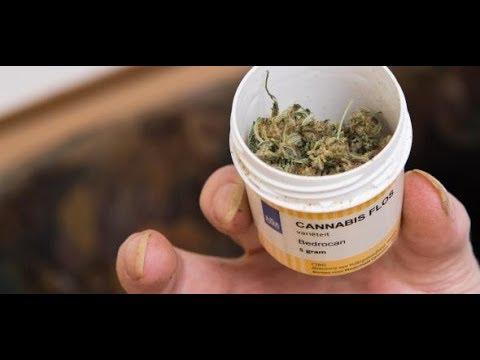 13.000 Anträge: Cannabis auf Rezept – Lieferengpässe in ...